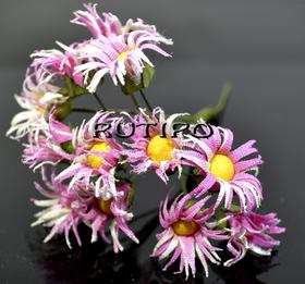 Хризантеми рожеві 30мм, 1 квітка