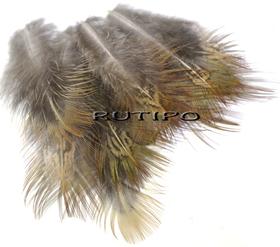 Перо фазана 6-12см, шт